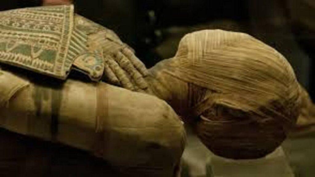manual de mumificare