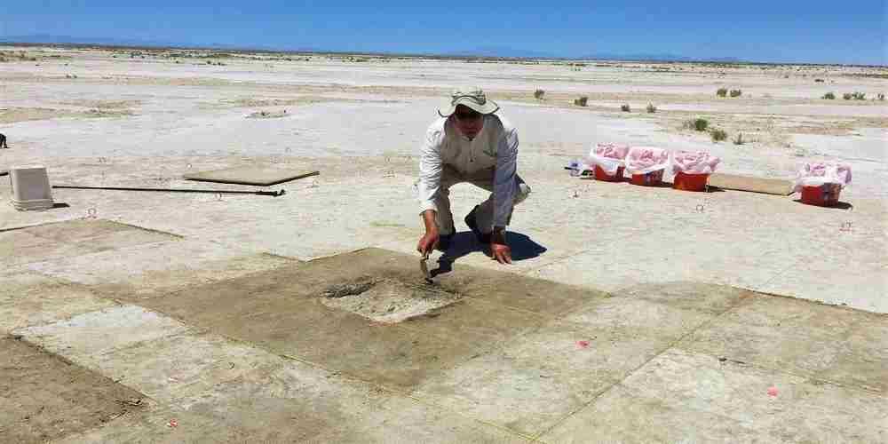 descoperite urme de tutun si nicotina de mai mult de 10 mii de ani